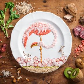 Ilustraciones de aves hechas con alimentos