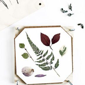 Cómo hacer un secador o presionador de flores tú mismo